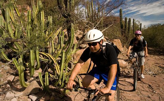 Baja California Sur ofrece múltiples opciones para el ciclismo de montaña. (Foto de la Secretaría de Turismo del estado)