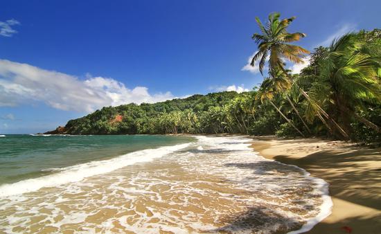 A beautiful beach in Dominica
