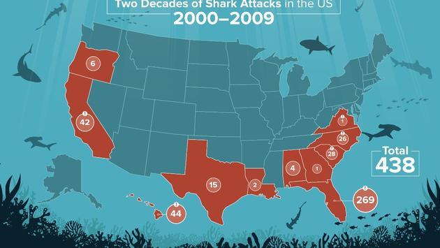 UNited States, shark, Attack