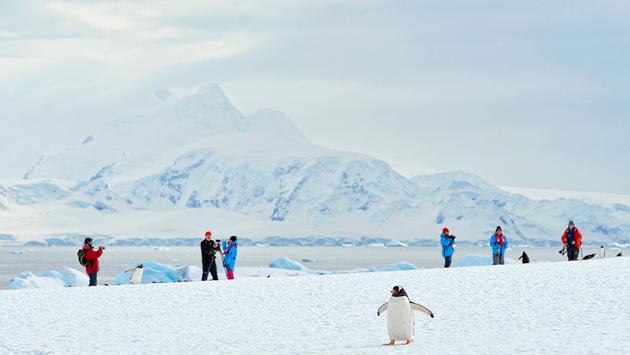 Antarctica, Hurtigruten Cruise