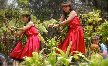 Hula dancers performing in Hawaii.