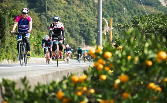 Cycling Shimanami Bike Tour