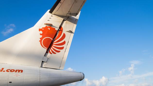lion air, plane, tail