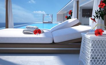luxury swimming pool with hibiscus flower. 3d rendering