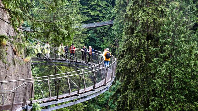 Cliff Walk Over Capilano River in Vancouver