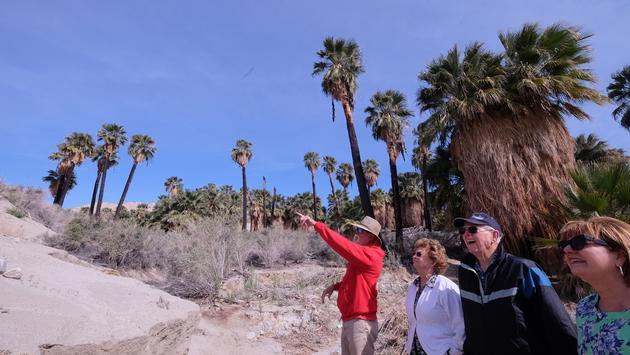 Mike Groves de la empresa Aventuras en el Desierto en un Jeep Rojo muestra un oasis en la Falla de San Andrés a los visitantes en Palm Springs.