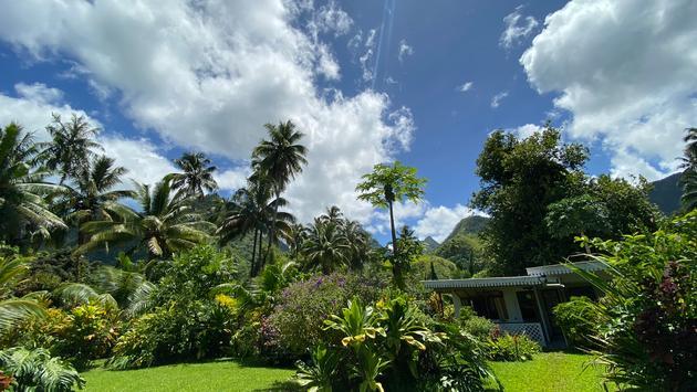 Bonjouir Teahupoo Lodge Paradise Garden, Tahiti island