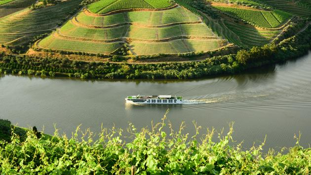 The Scenic Azure sails past vineyards on the Douro River in Portugal