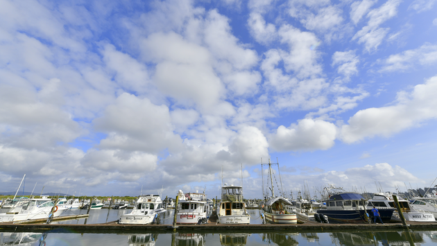 Ilwaco Harbor Marina, Washington