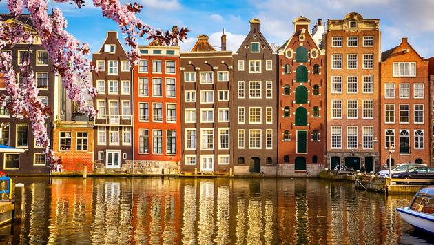 Amsterdam's charming, traditional buildings are fronted by cherry blossoms in spring.
