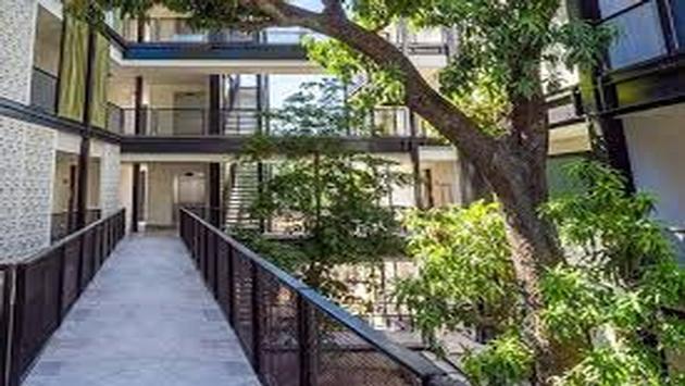 En el hotel Wayam Mundo Imperial todos los árboles del recinto se conservaron y se mantienen intactos