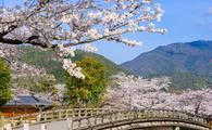 Arashiyama, Kyoto, Japan in the spring season.