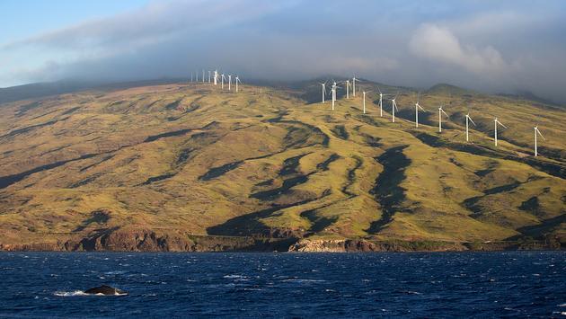 Éoliennes de Maui