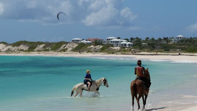 Horseback Riding Anguilla