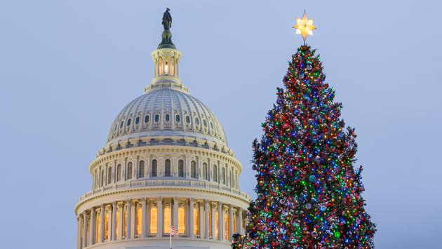 Christmas tree in front of Capitol Washington DC (Photo via BackyardProduction / iStock / Getty Images Plus)