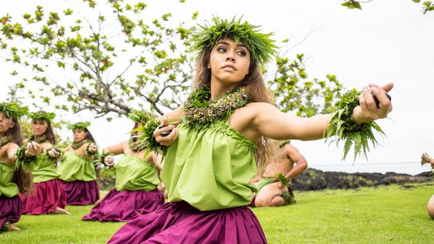 Grow Your Business - Become a Hawaii Specialist Today!