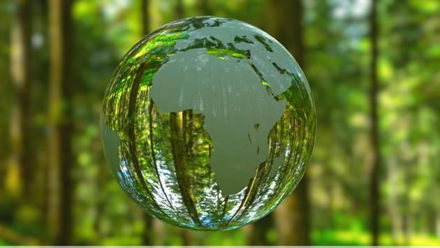 Avalon Waterways' partnership with Trees4Travel.