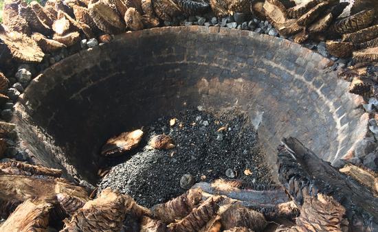 Mezcal agave pit