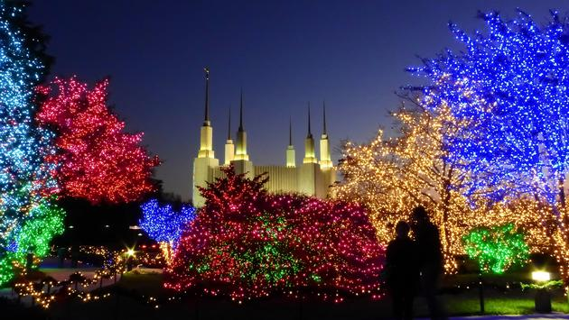 Festival of Lights at the Washington DC Temple in Kensington, Maryland