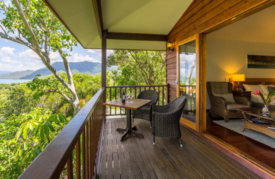 room, treehouse, thala beach nature reserve