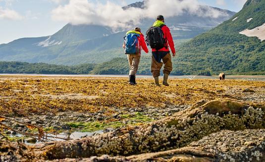 Katmai National Park
