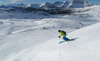 Calgary Banff 5-day ski pass & car rental $709 USD