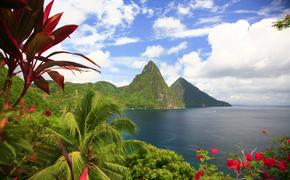 Pitons and flowers in Saint Lucia