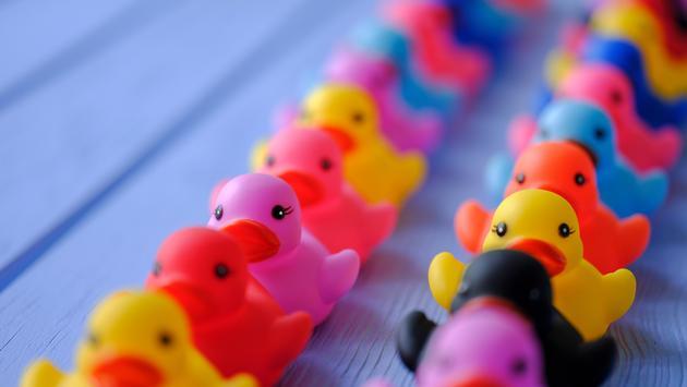 Multicolored Rubber Ducks