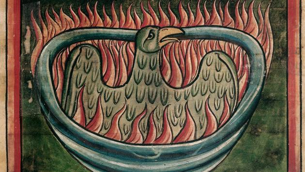 A phoenix rising from the ashes in a 13th-century bestiary