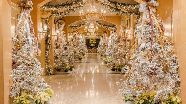 Royal Sonesta New Orleans 'Royal Snownesta.'