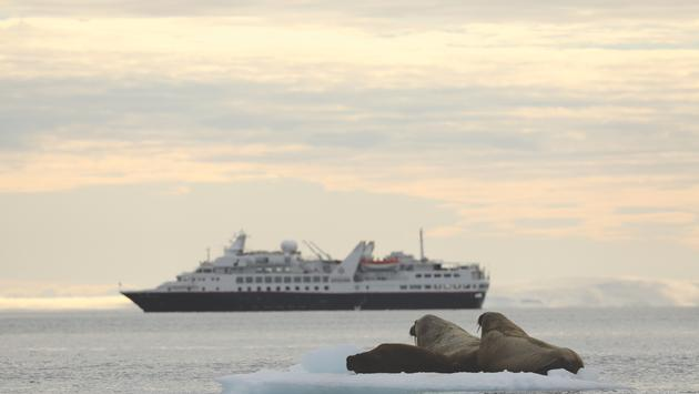 The Silver Explorer accommodates 144 guests in ocean-view suites. She carries a fleet of 12 Zodiac crafts and an onboard Expedition Team of specialists. (photo courtesy of Silversea Cruises)