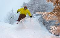 Expert skier on a powder day.