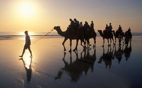 Camel trekking in Essaouira, Morocco