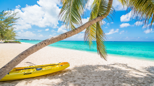 Seven Mile Beach, Kayak and Palm tree from the side (PHOTO: Photo via IreneCorti / iStock / Getty Images Plus)