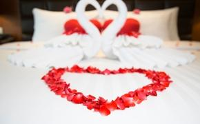 red petals, romantic, valentine's day, heart towels, hotel bed