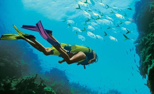 DIVE-IN WITH PADI at Beaches Turks & Caicos