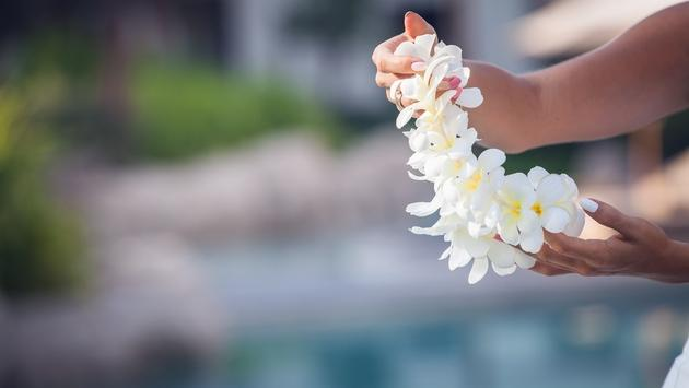 A Hawaiian lei made from plumeria flowers.