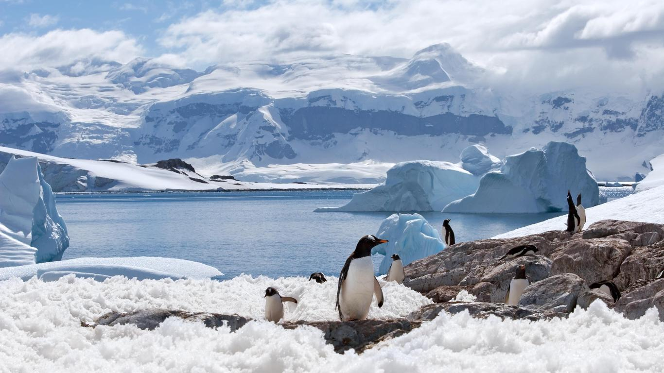 Spend the Night With Penguins in Antarctica