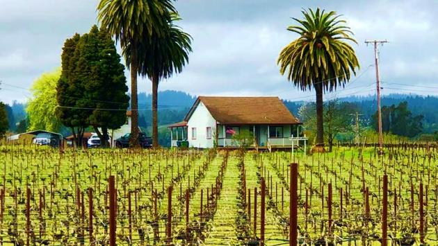Weekend in Spectacular Sonoma County