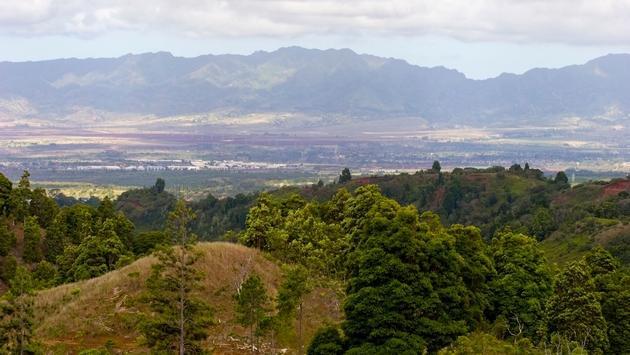 Expansive view of Oahu from the Manana Trail