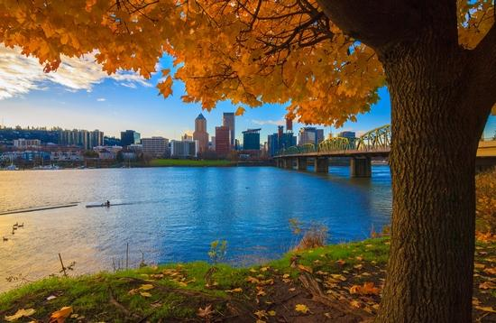 View of Portland, Oregon overlooking the Willamette River during fall