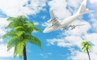 White Jet Passenger's Airplane Flying over Tropical Palm Trees on Blue Sky. 3d Rendering