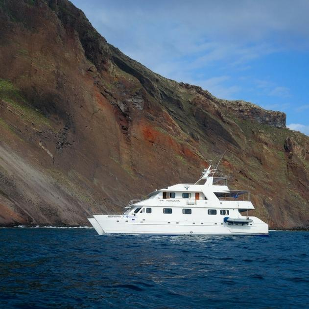 Sea Star Journey Special Deal for Jan - March 2018