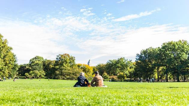 A couple having a picnic in New York City's Central Park
