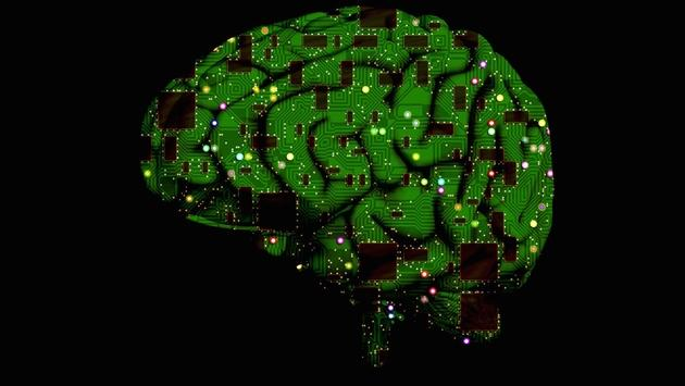 Circuit board brain