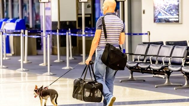 Man walking his dog in an airport