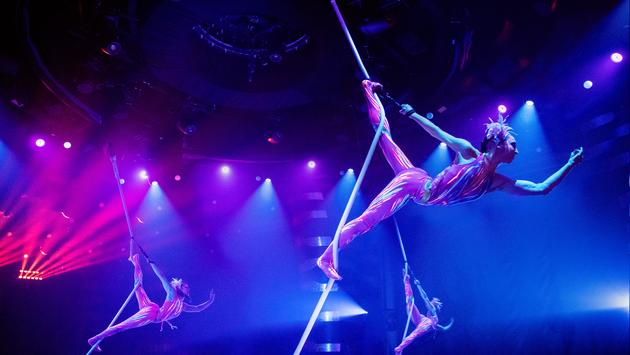 'COSMOS, Journey to the Unbelievable' Cirque du Soleil's newest show onboard MSC Grandiosa