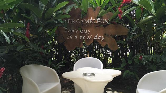 Hôtel Le Cameleon