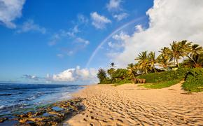 Rainbow over Sunset Beach, Oahu, Hawaii