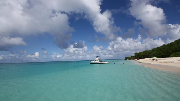 Buck Island, St. Croix, USVI